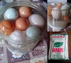membuat telur asin berkualitas grosir telur ayam usaha telur ayam pengusaha telur penetasan