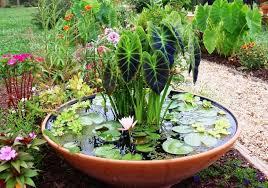 Home Gardening Ideas Easy Gardening Ideas Captivating Interior Design Ideas