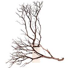 manzanita branches for sale 12 manzanita branches 24