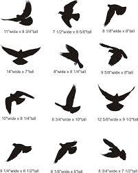 bird tattoos on matching cousin tattoos three
