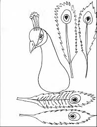 astonishing indian peacock coloring pages with peacock coloring