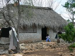 Mexican Thatch Roofing by Architecture Of The Mexican Maya Past And Present
