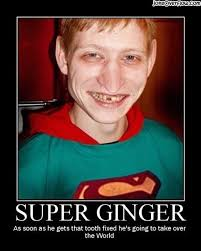 Funny Ginger Meme - hilarious jokes ginger people bullied and worse for being