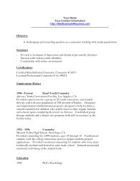 Juvenile Detention Officer Resume Sample Resume Objectives Criminal Justice Objective Resume