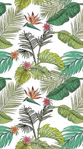 137 best tropical iphone wallpapers images on pinterest walls