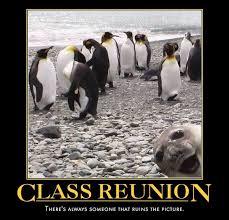Funny Penguin Memes - funny high school reunion memes bing images high school reunion