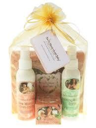 Postpartum Gift Basket Mama Organica Postpartum Recovery Gift Bundle