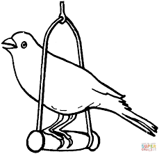 canary bird coloring free printable coloring pages