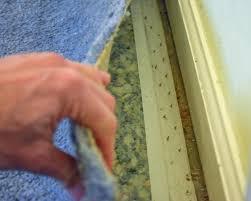 Laying Laminate Flooring On Carpet Laminate Over Carpet Floor Carpet Vidalondon