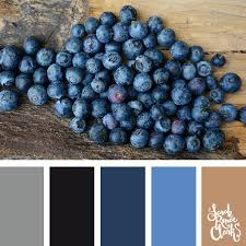 2017 color combinations 25 color palettes inspired by the pantone fall 2017 color trends