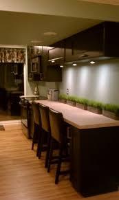 Basement Apartment Remodeling Ideas 24 Best Apartment Remodeling Images On Pinterest Basement