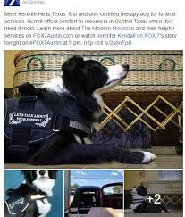 Comfort Funeral Home Admin Author At Service Dog And Emotional Support Animal