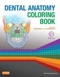 anatomy coloring book pearson dental anatomy coloring book edition 2 by margaret j fehrenbach
