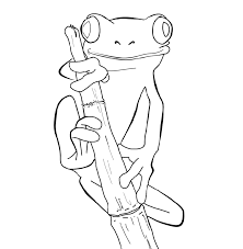 frogs coloring pages coloring pages frogs