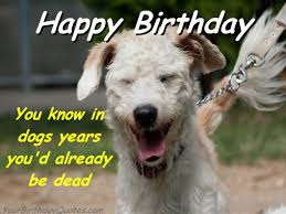 Sarcastic Happy Birthday Wishes Index Of Wp Content Gallery Great Birthday Quotes