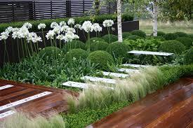 download contemporary plants solidaria garden
