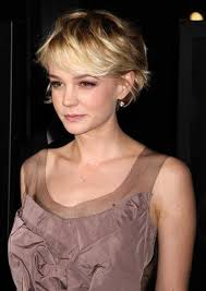 hairstyles 2015 women double crown and fine hair 62 best hair images on pinterest hairstyle short hair cut and