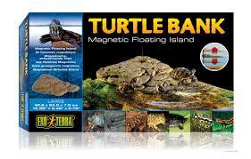 Turtle Planter Cliffs And Planters Livefood Uk Ltd