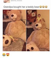 Teddy Bear Meme - lioness grandpa bought her a teddy bear gwill ent meme on me me