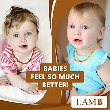 amber necklace baby images Best baltic amber teething necklace for baby honey jpg