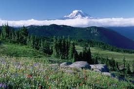 Washington scenery images White pass scenic byway jpg
