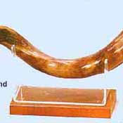 shofar holder ceremonial rams horn yemenite shofar on sale in stock at great