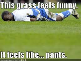 Grass Memes - image 221302 this grass it feels like pants know your meme