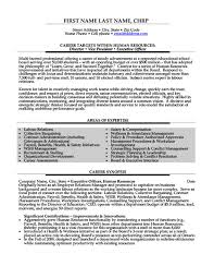 Non Profit Resume Samples by Vice President Of Operations Resume Examples