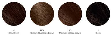 Golden Color Shades At Home Hair Color How To Get The Shade Right Beautylish