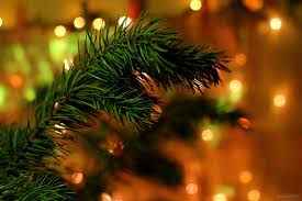 order the natural look of christmas tree to bring out the better