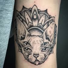10 hairless cat tattoos tattoo com