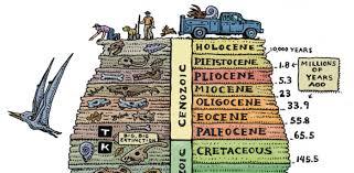 Sho Epoch 2428 the anthropocene epoch scientists declare of human