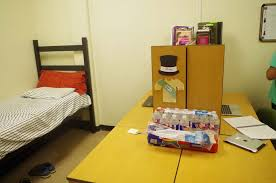 how to raise a bed bed information texas academy of mathematics science
