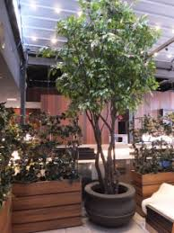 artificial trees in decorative containers custom made to order
