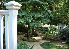 garden tool entwinedlife