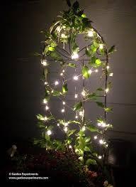 adding a magic to my garden using lights