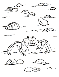 ghost crab coloring page samantha bell