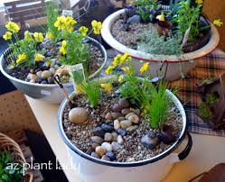 garden pots design ideas fairy garden container ideas with bombadeagua me