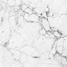 white marble white marble texture background high resolution scan stock photo