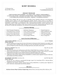 sle resume business analyst finance domain democratic underground test punchy resume