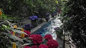 washington dc national botanical garden flower fountain 4k the