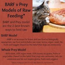 barf v prey models of raw feeding w kttw dog health and raw