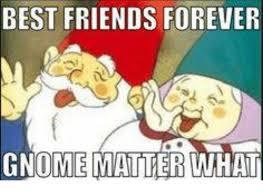 Gnome Meme - best friends forever gnome matter what best friend meme on me me