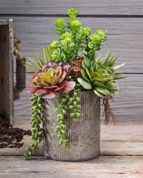succulent arrangements string of pearls jade artificial succulent arrangement at