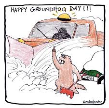 funny happy groundhog grteeings card image picsmine