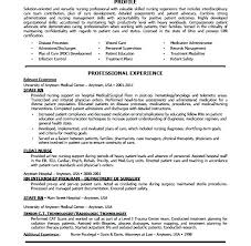 Usa Resume Template by Us Resume Template Sweet Partner Info