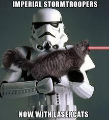 Herding Cats Meme - stormtroopers with laser cats star wars catsstar wars cats