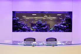 Petsmart Christmas Aquarium Decorations by Best 90 Office Fish Tank Decorating Design Of Interesting Office
