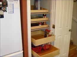 pull out cabinet organizer costco pull out closet pull out closet shelves closet a naves pull out