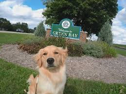 dog friendly spots in greater green bay greater green bay cvb blog